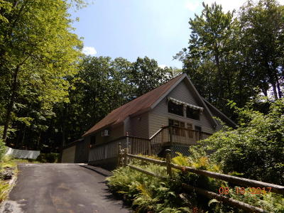 Lords Valley PA Single Family Home For Sale: $62,000