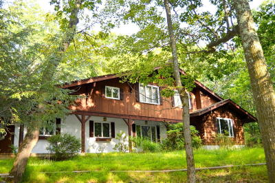 Hemlock Farms Single Family Home For Sale: 501 Forest Dr