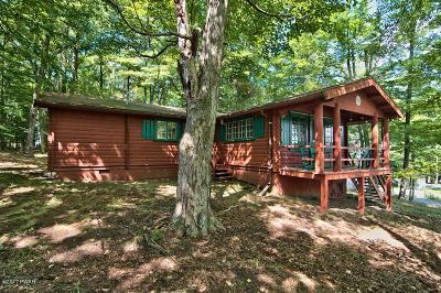 Lake Ariel Single Family Home For Sale: 550 Parkwood Dr