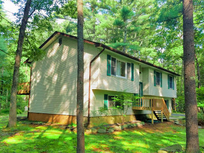 Milford Single Family Home For Sale: 414 Leisure Loop