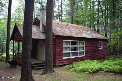 Paupack Single Family Home For Sale: 110 Black Bear Run