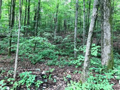 Wayne County Residential Lots & Land For Sale: 48 Wild Acres Dr