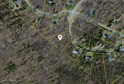 Milford Residential Lots & Land For Sale: Lot 10 Bluestone Cir