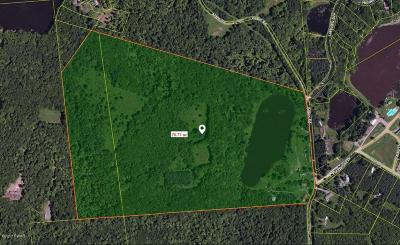 Honesdale Single Family Home For Sale: 215 Alden Rd