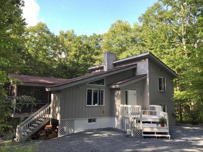 Hawley Single Family Home For Sale: 128 Stirrup Ln