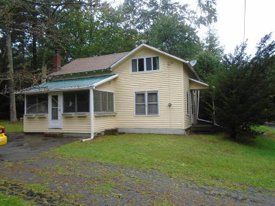 Blooming Grove Single Family Home For Sale: 919 Route 402