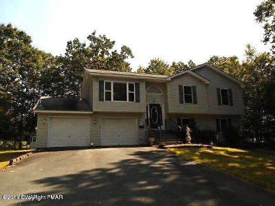 Milford Single Family Home For Sale: 115 Poplar Dr