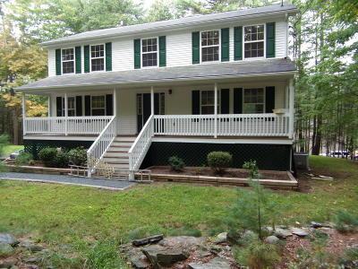 Dingmans Ferry Single Family Home For Sale: 209 Doolan Rd