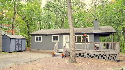 Dingmans Ferry PA Single Family Home For Sale: $73,000