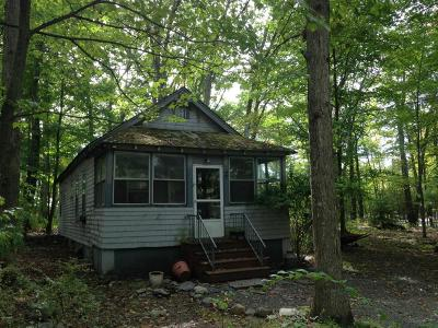 Dingmans Ferry Single Family Home For Sale: 1753 Route 739