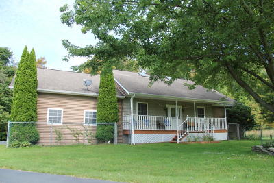 Pleasant Mount PA Single Family Home For Sale: $249,900