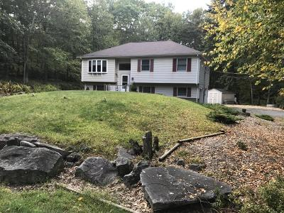 Milford PA Rental For Rent: $1,300