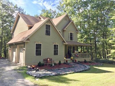 Shohola Single Family Home For Sale: 132 Kara Ln