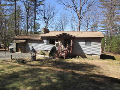 Dingmans Ferry Single Family Home For Sale: 160 Doe Dr