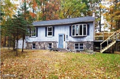 Lackawaxen Single Family Home For Sale: 345 Oak Hill Rd