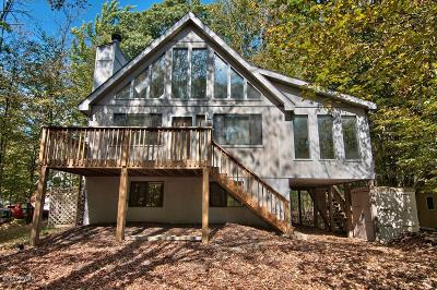 Lake Ariel Single Family Home For Sale: 4217 Chestnuthill Dr