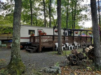 Hawley Single Family Home For Sale: 14 Booboo Ln