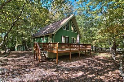 Lake Ariel Single Family Home For Sale: 1393 Woodview Ter