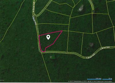 Briar Hill Residential Lots & Land For Sale: 5 S Briar Hill