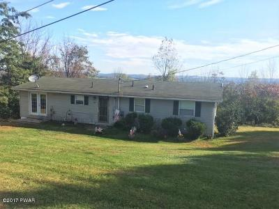 Honesdale Single Family Home For Sale: 102 Summit Dr