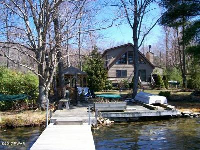 Lake Ariel Single Family Home For Sale: 163 E Island Ln
