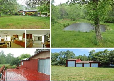 Hawley Single Family Home For Sale: 1804 Us-6