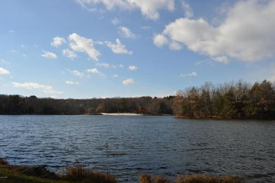 Wallenpaupack Lake Estates Residential Lots & Land For Sale: 16 Beaver Lake Dr