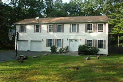 Dingmans Ferry Single Family Home For Sale: 617 Silver Lake Rd
