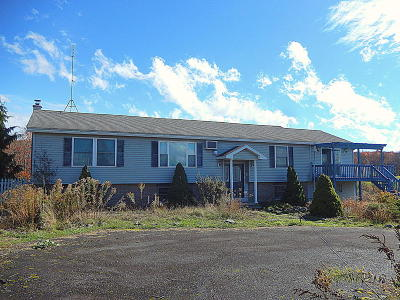 Honesdale Single Family Home For Sale: 1046 Carley Brook Road