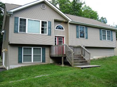 Honesdale Single Family Home For Sale: 1409 Westside Ave