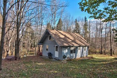 Lake Ariel Single Family Home For Sale: 17 Big Spring Ln