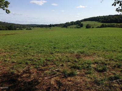 Damascus Residential Lots & Land For Sale: 371 Canfield Rd