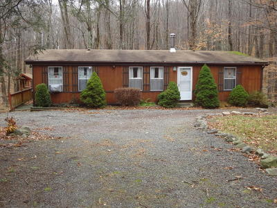 Canadensis Single Family Home For Sale: 109 Lakewood Dr