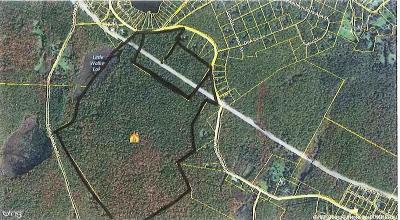 Pike County Residential Lots & Land For Sale: Twin Lakes Rd
