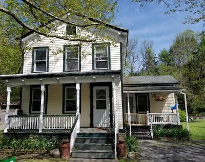 Milford Single Family Home For Sale: 315 Water St