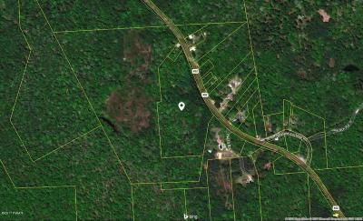 Blooming Grove PA Residential Lots & Land For Sale: $129,900