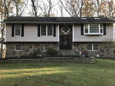 Milford PA Single Family Home For Sale: $289,000