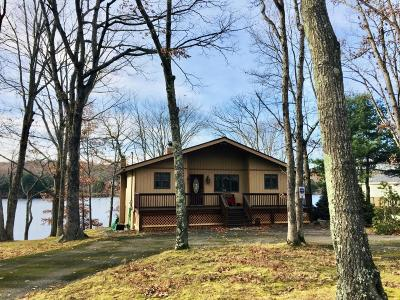 Milford Single Family Home For Sale: 116 Pine Terrace