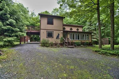 Lake Ariel Single Family Home For Sale: 27 Bird Ln