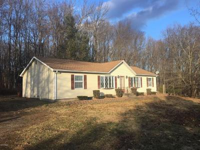 Honesdale Single Family Home For Sale: 284 Watts Hill Rd