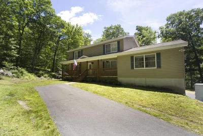 Milford Single Family Home For Sale: 141 High Meadow Dr