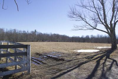 Honesdale Residential Lots & Land For Sale: 1186 Owego Tpke