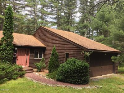 Dingmans Ferry Single Family Home For Sale: 141 Meath Ln