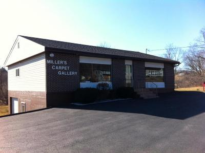 Wayne County Commercial For Sale: 1131 Texas Palmyra Hwy