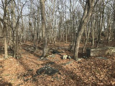 Lackawaxen PA Residential Lots & Land For Sale: $25,000