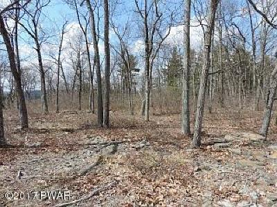 Pike County Residential Lots & Land For Sale: Lot 40 Blue Heron Way