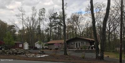 Milford Single Family Home For Sale: 119 Gold Key Rd