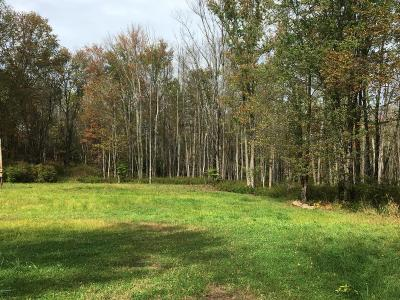 Beach Lake PA Residential Lots & Land For Sale: $89,500