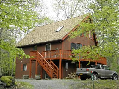 Lackawaxen Single Family Home For Sale: 133 Pioneer Dr
