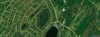 Dingmans Ferry Residential Lots & Land For Sale: Pa-739